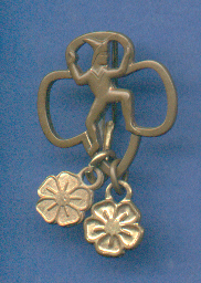 Older Brownie Pin
